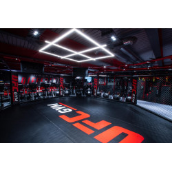 MMA cages customisation