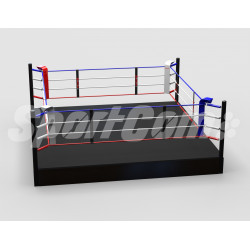 Pro training boxing ring...