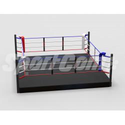 Pro training boxing ring...