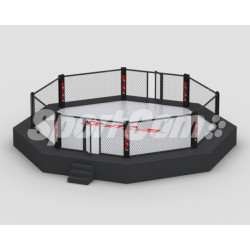 "MMA cage octagon ""UFC"""
