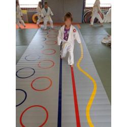 Roll-out teaching mat